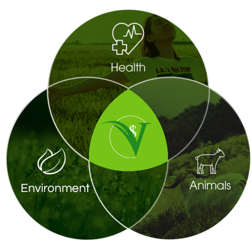 Venn Diagram showing intersection of Health Environment and Animals